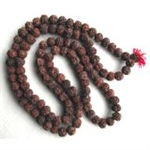 Picture of Large Rudraksha Japa Mala 18-20 mm Prayer Beads
