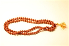 Picture of Rudrakasha Mala(108 - 8.5mm Beads on a Knotted Thread)